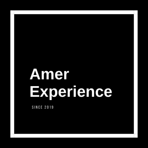 Amer Experience Logo Global Business