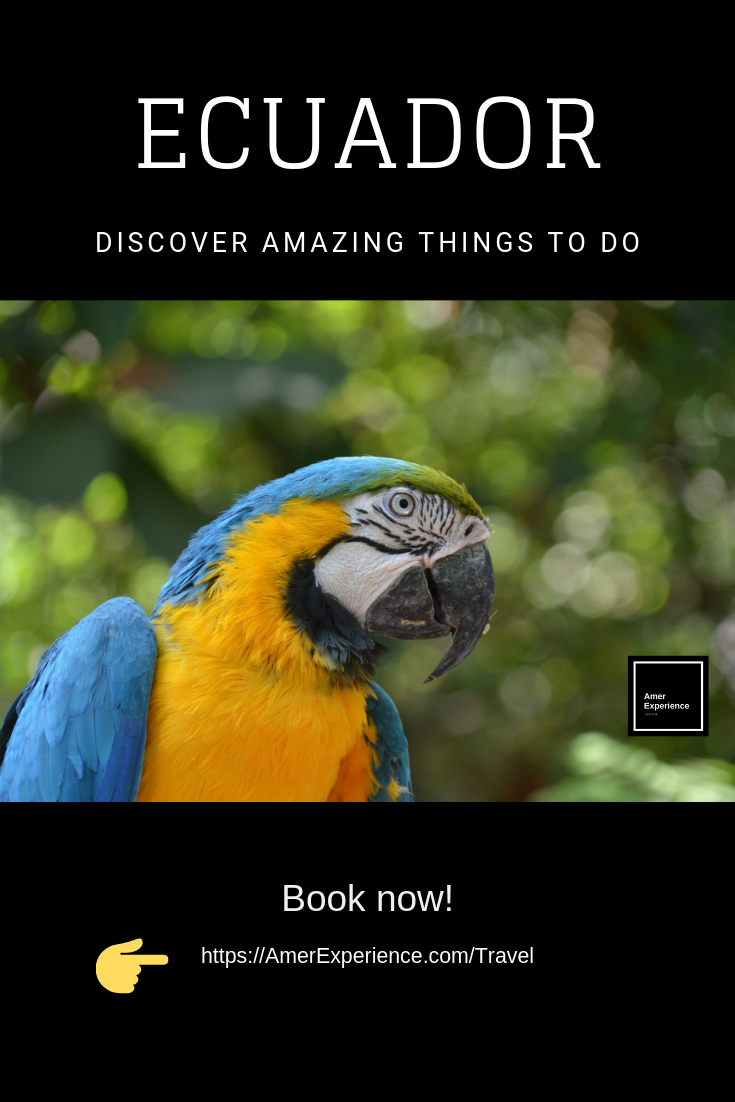 Book here  wonderful adventures and tours to do in Ecuador
