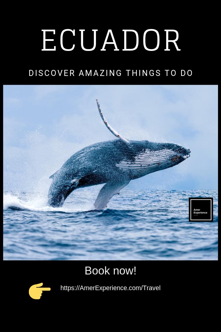 Ecuador Puerto Lopez Wale Watching