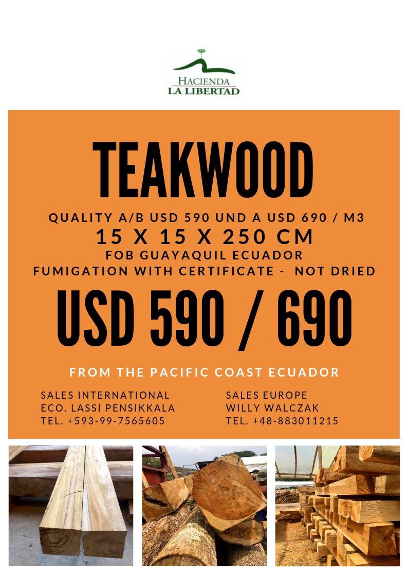 Teak Wood Export From Ecuador